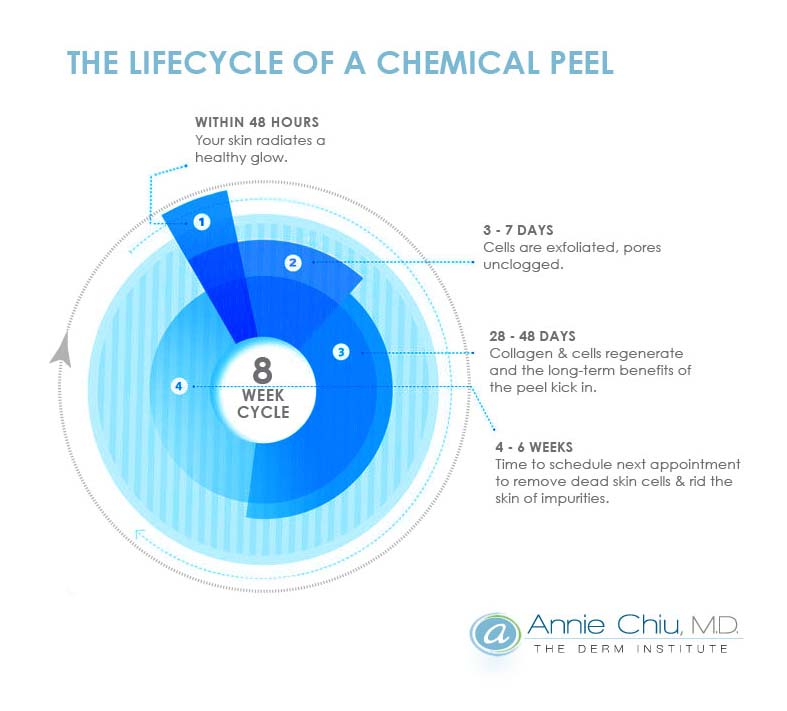 chemical-life-cycle.psd_